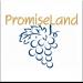 Promiseland Logo Thumbnail