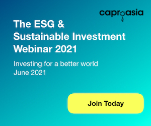 The ESG & Sustainable Investment Webinar 2021 300x250
